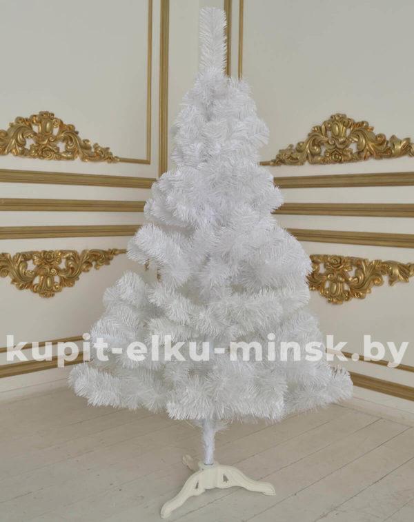 белая елка купить