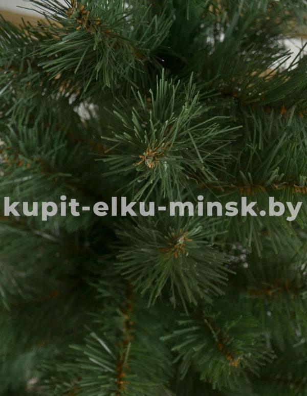 купить елки в минске